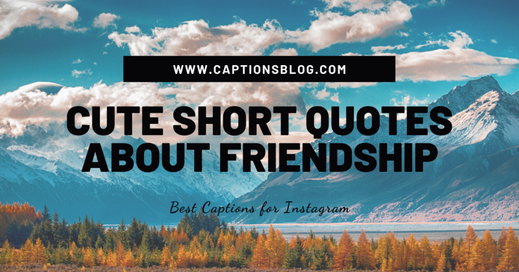 CUTE SHORT QUOTES ABOUT FRIENDSHIP