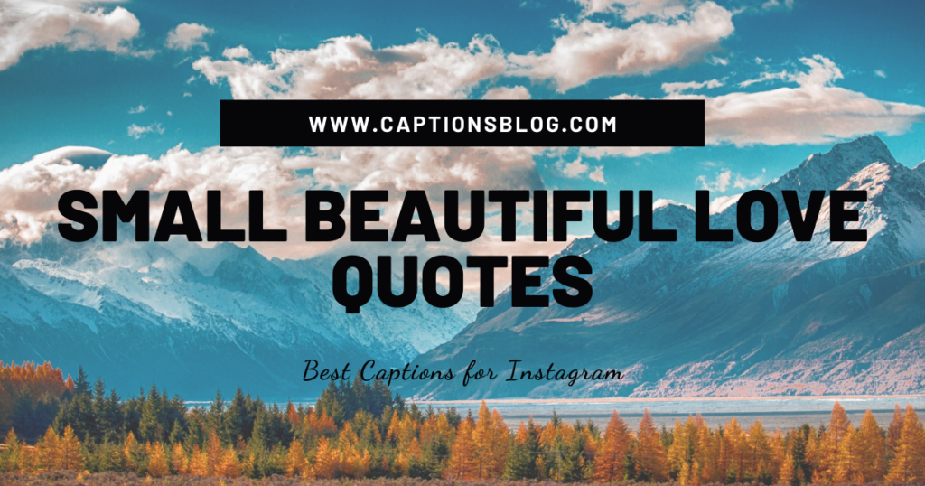SMALL BEAUTIFUL LOVE QUOTES