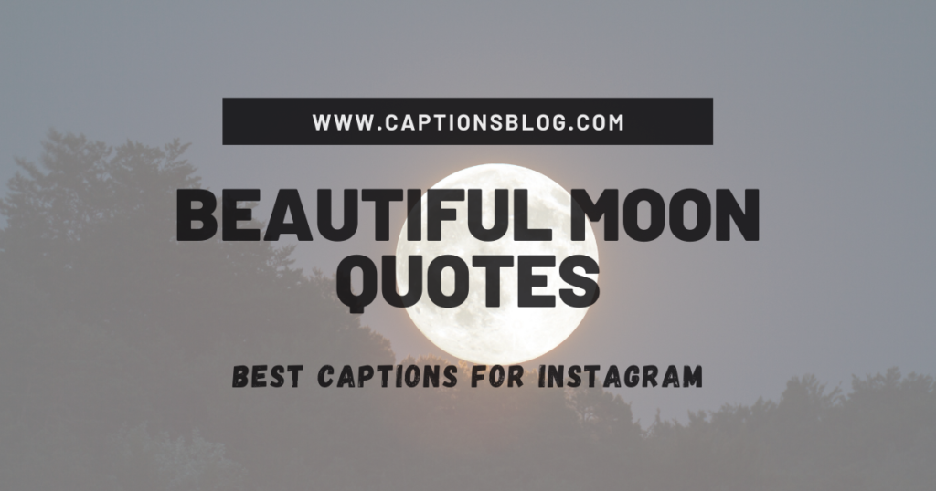 Beautiful Moon Quotes